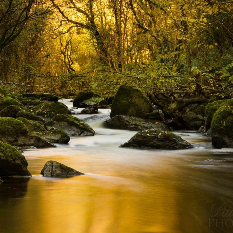 Golden river run