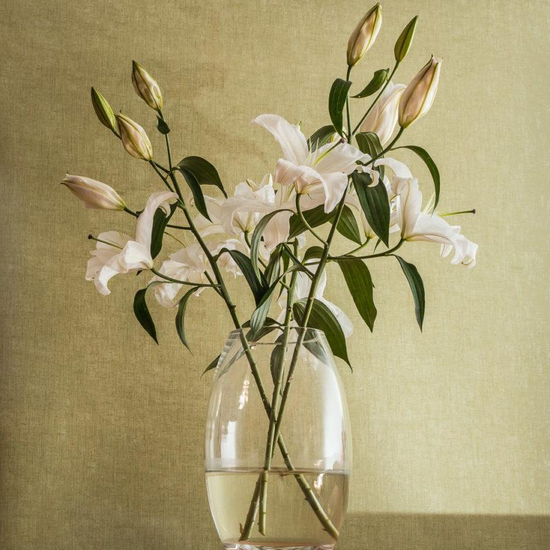 lilies_6015-edit2_1920px